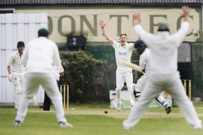 Abingdon Vale's Joe Butcher appeals in vain for a lbw decision against Didcot Picture: Ed Nix