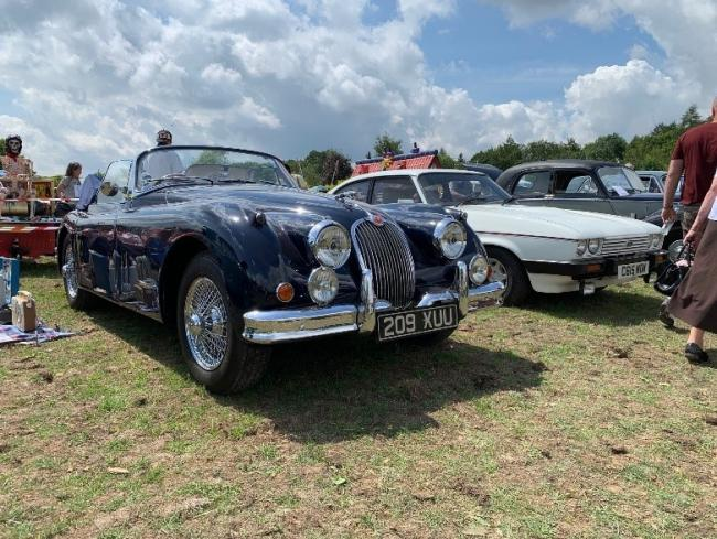 Classic cars on display. Picture: Notcutts Garden Centres Ltd