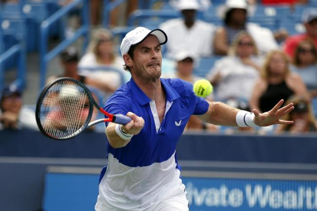 Andy Murray was beaten in straight sets