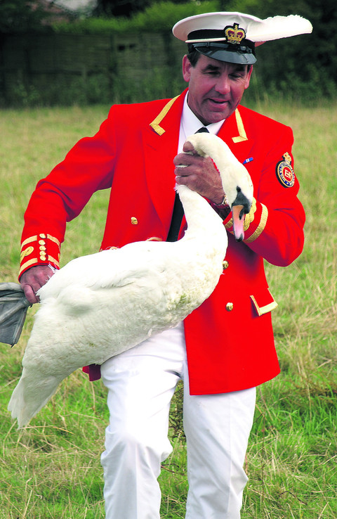 Flooding threatens ancient Swan Upping ceremony