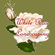 White Rose Landscaping