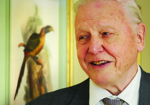 Sir David praises grace and style of artist's work