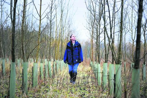 The Oxford Times: Forestry research manager Jo Clark of the Earth Trust at the organisation's Paradise Wood in Long Wittenham
