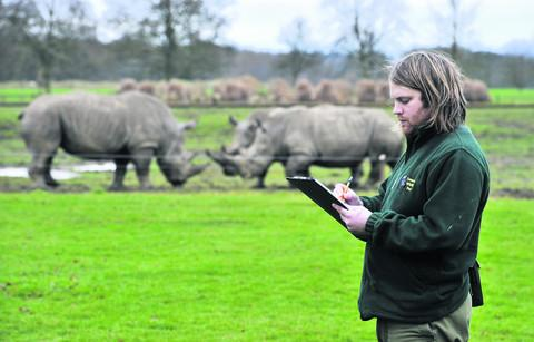 Keeping stock at Cotswold Wildlife Park's yearly animal count