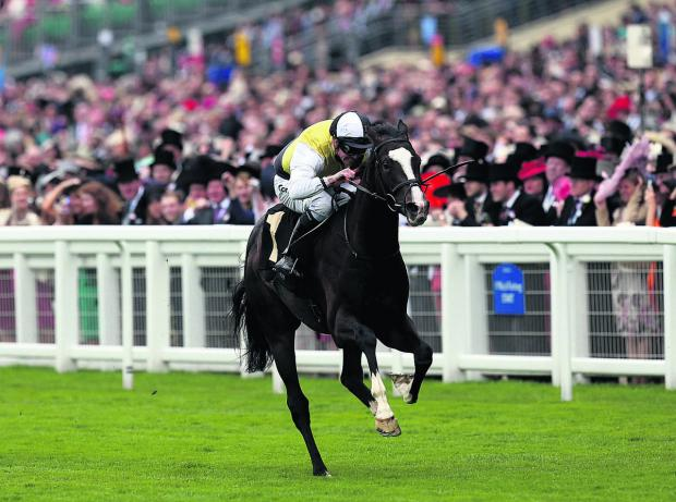 The Oxford Times: Berkshire, seen winning the Chesham Stakes at Royal Ascot last season