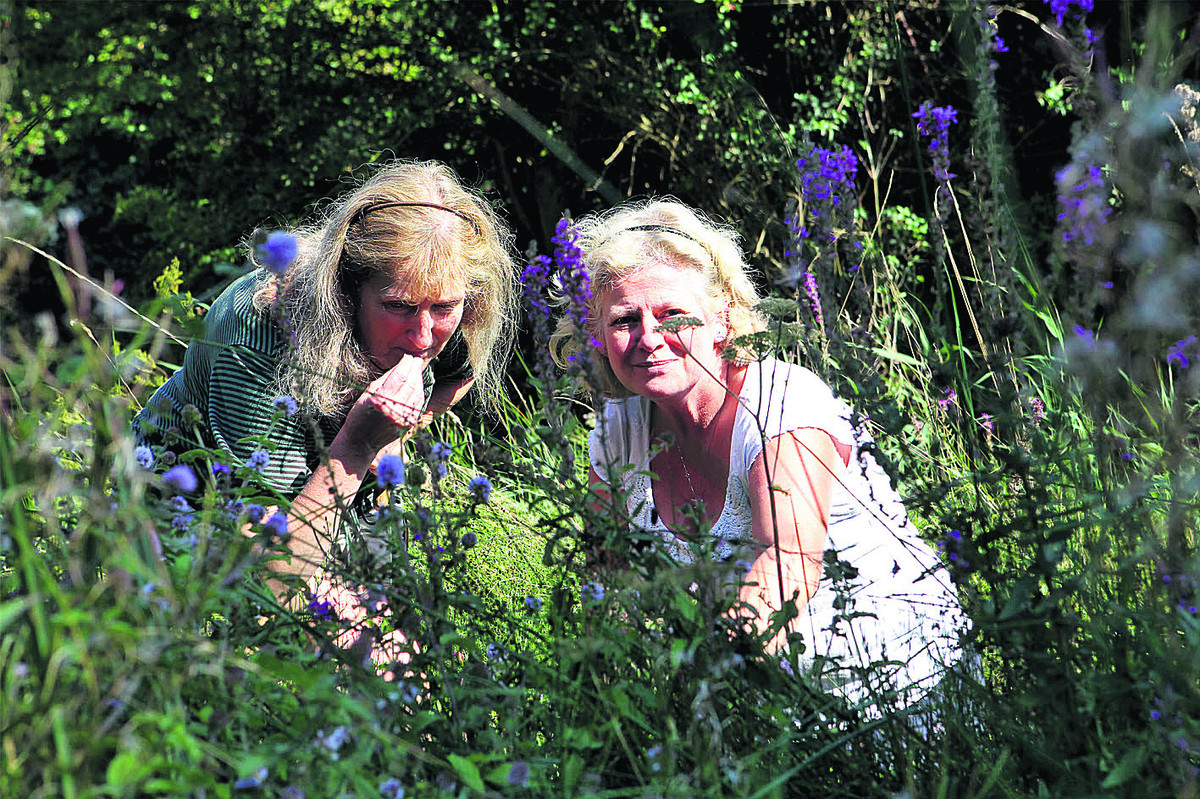 Friends of Lye Valley member Jane Alexander, left, and county councillor Roz Smith. Picture: OX61742 Ric Mellis