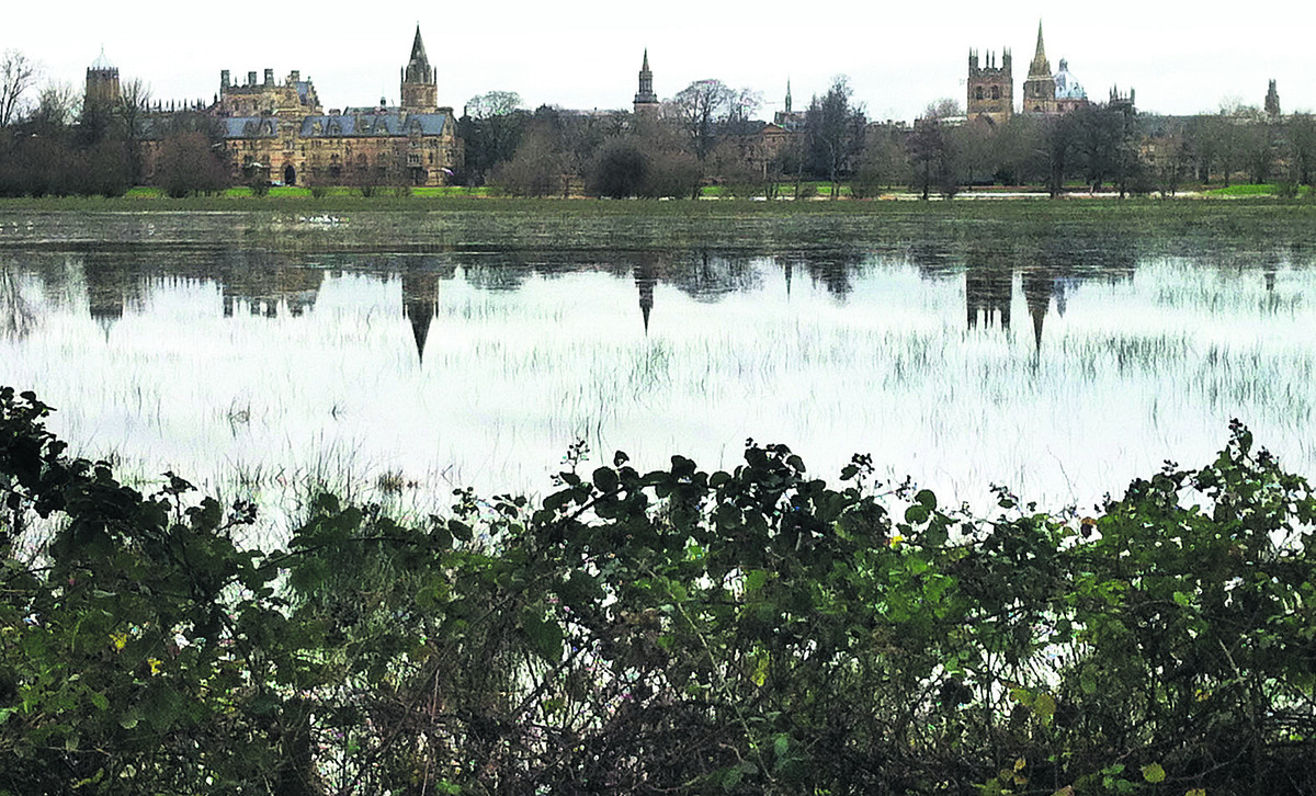 Reflections in the water at Christ Church Meadow in Oxford yesterday