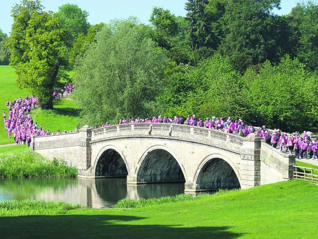 Competitors in Blenheim's Pink Ribbon Walk enjoy a 10-20-mile hike through the estate's beautiful grounds