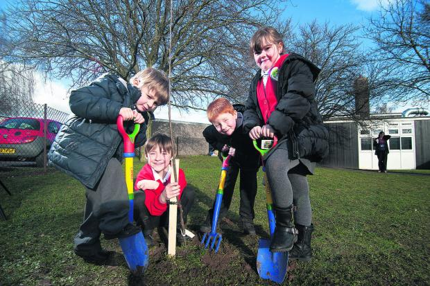 The Oxford Times: Tom Griffiths, five, Kian Hanton, eight, Mason Anns, six, and Jaimie-Leigh Orme, six, plant fruit trees at Abbey Woods Academy