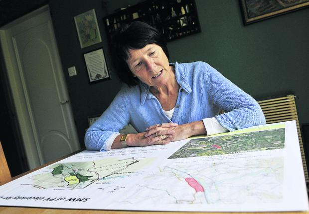The Oxford Times: Liz Reason looking at the plans for the solar farm. Picture: OX61141 Mark Hemsworth