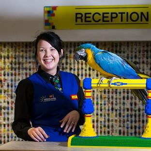 The Oxford Times: Charlie the parrot chats with receptionist Amber Dixon at the Legoland Windsor Resort Hotel in Berkshire.