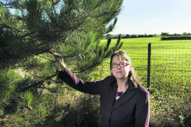 Helen Marshall, the director of Campaign to Protect Rural England Oxfordshire, is worried about over development of the green belt in the county.Picture: Antony Moore