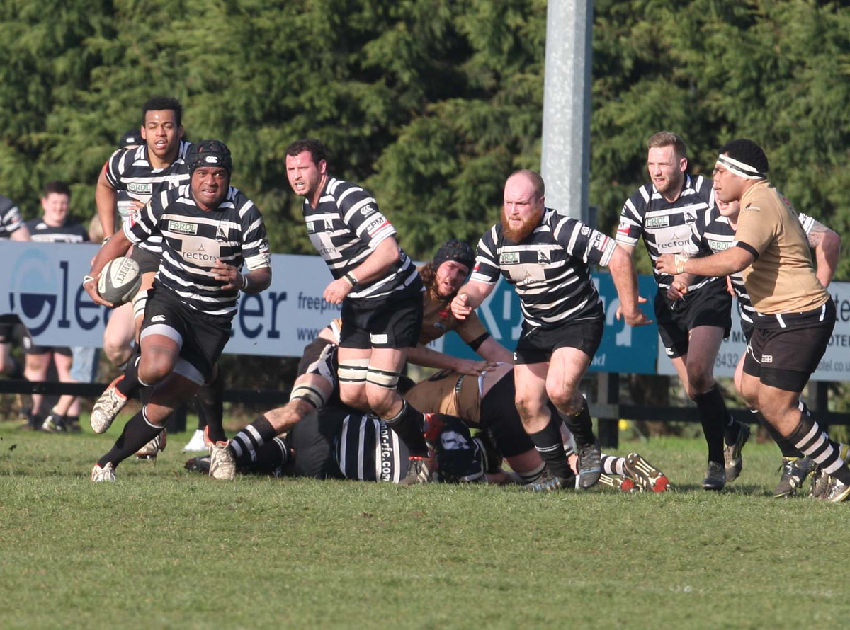 No 8 Ledua Jope, one of five players brought in by Matt Williams, leads Chinnor's attack against Launceston