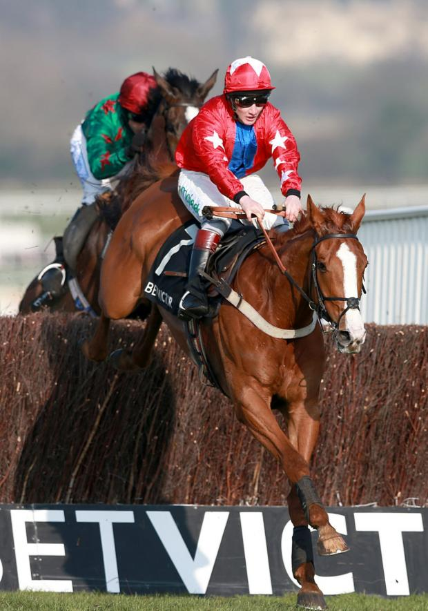 The Oxford Times: Sire De Grugy leads Somersby over the last fence to win the BetVictor Queen Mother Champion Chase