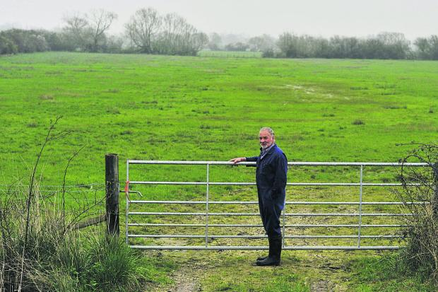 The Oxford Times: Farmer Brian Franklin at a field in Moorlands Farm in Murcot last week.     Picture: OX66375 Mark Hemsworth