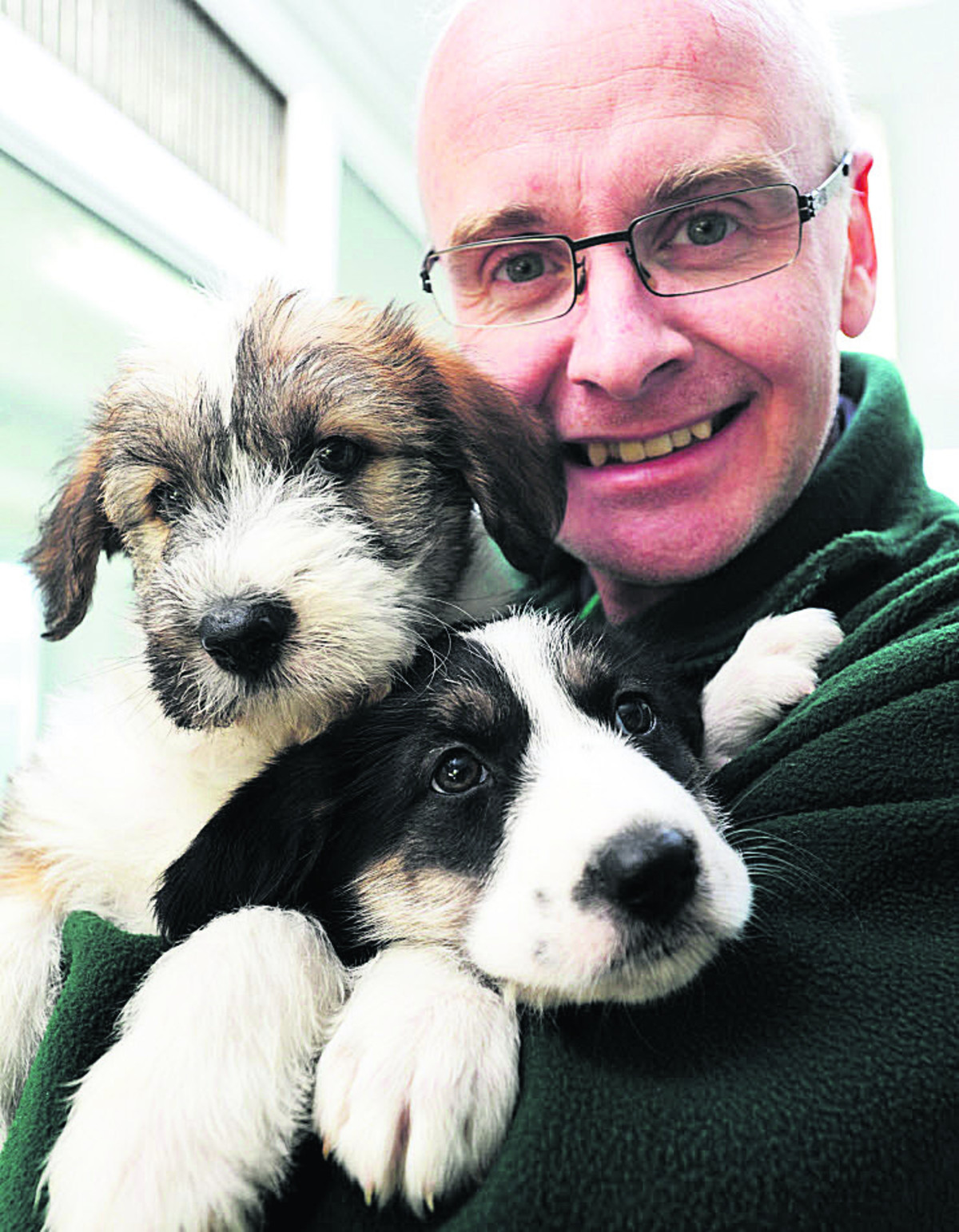 Iain Atkin with Leah, left, and Lola, two recently homed Old English Sheepdog/Lurcher/Irish Wolfhound cross six-week-old pups