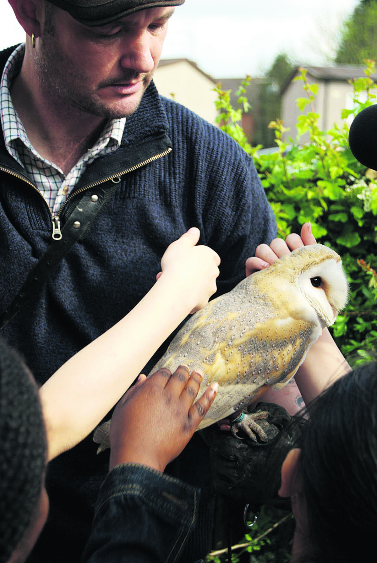 Glen Easton with Willow the barn owl