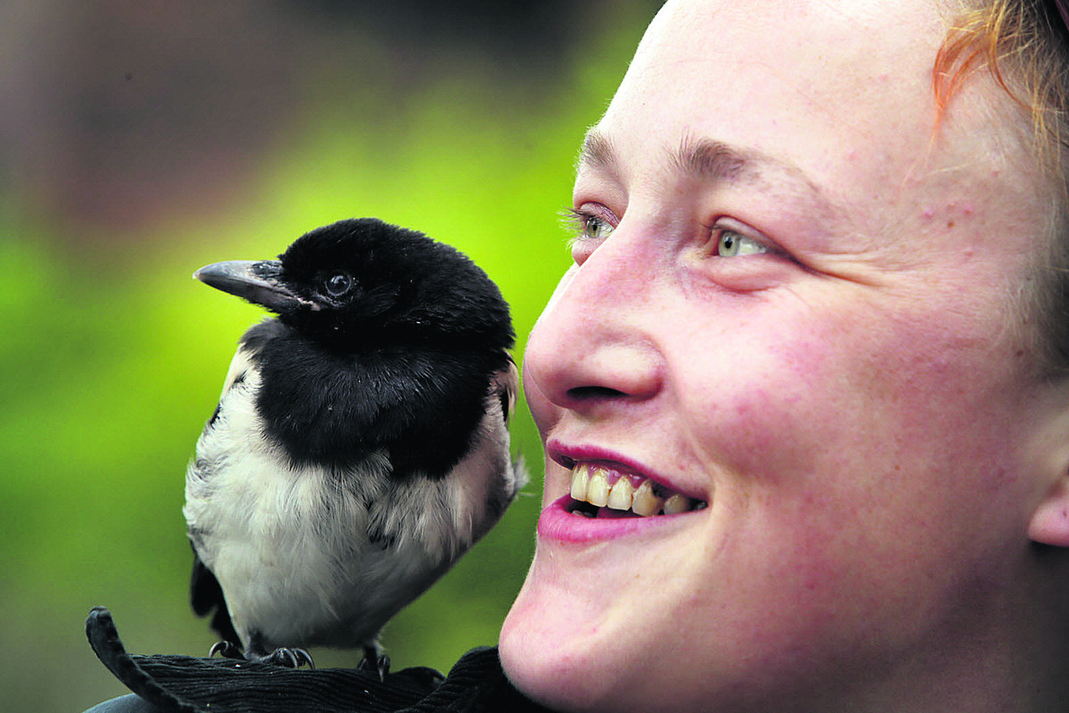 Lottie Pauling with the magpie