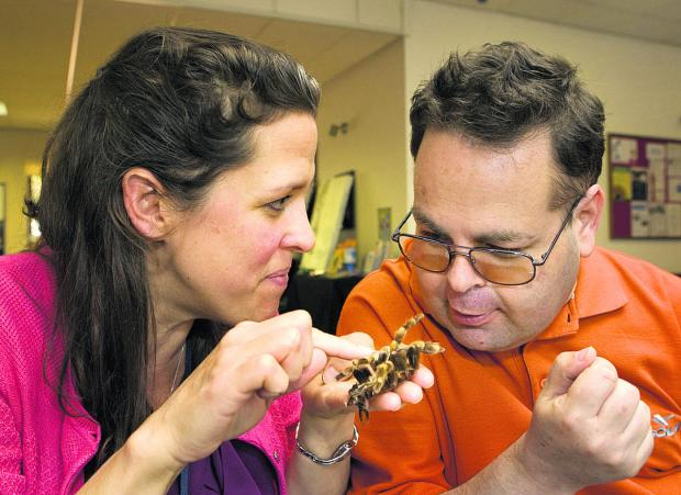 Nicola Bird shows Lee Woolford a tarantula