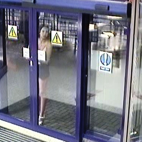 Police hunting woman who cracked glass door at Oxford railway station with her high heels