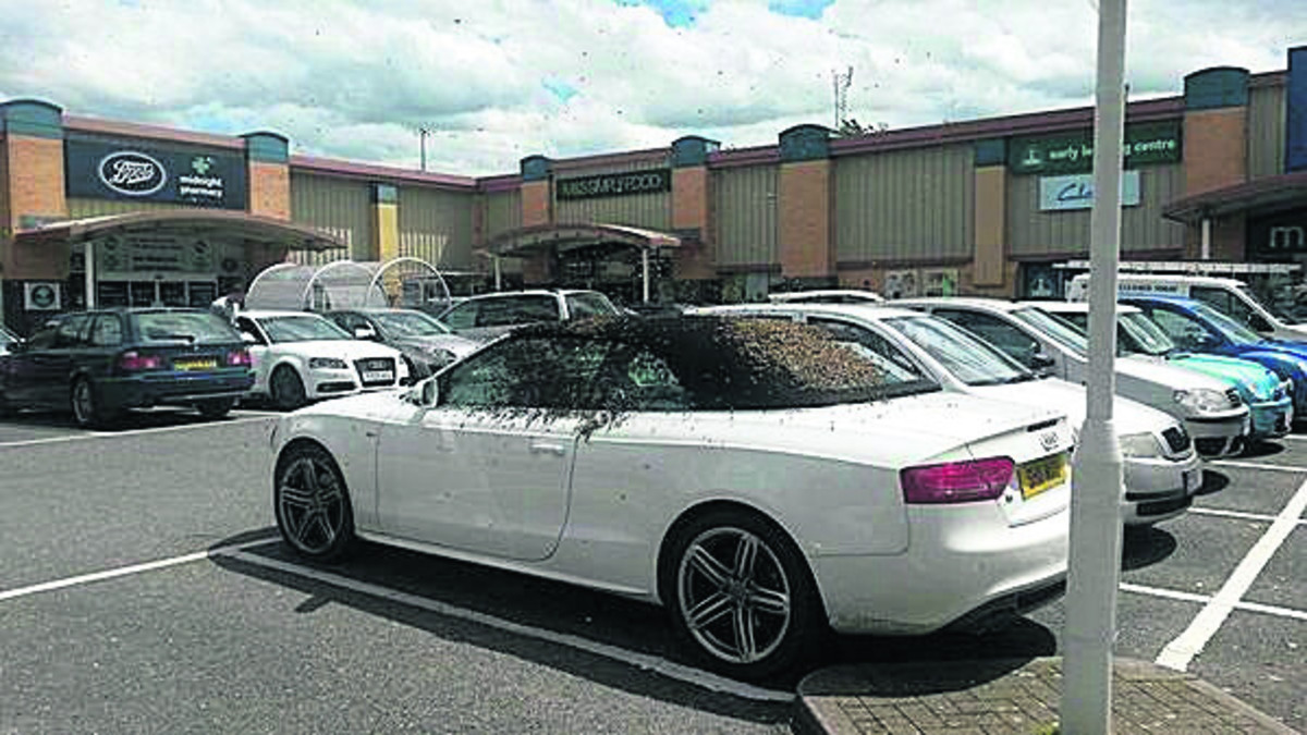 Swarm of bees hitch a ride on convertible