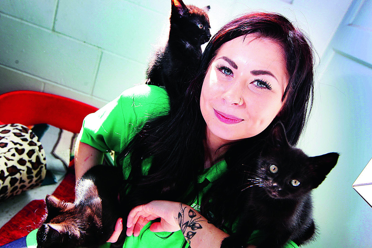 Grace Blizard from Oxfordshire Animal Santuary with two of the kittens found abandoned and in a bad condition near the Kassam Stadium. Picture: OX68186 Ed Nix