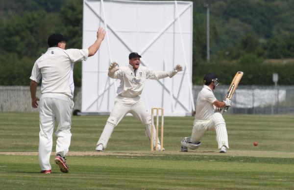 Oxford's Mark Beer (above) is trapped lbw when trying to sweep Adam Dobb