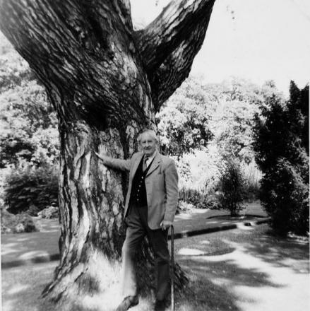 JRR Tolkien pictured by the tree