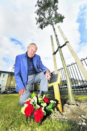 Respect: Arthur Rose at the tree commemorating the death of his uncle, Albert Rose, who was killed in June 1917