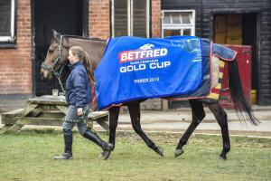 RACING: Mark and Sara Bradstock consider Hennessy Gold Cup challenge