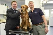 Care: NatWest Bank's Steve Moore with Dr Martin Whitehead and golden retriever Trevor