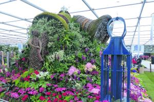 The glory of the Chelsea Flower Show