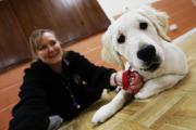 Sadie with owner Sandra Davies attends training sessions at the Fair Weather Dog Training Club. Picture: Ed Nix