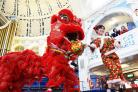 Luting Xu leads the lion dance that wowed the crowds at the Town Hall yesterday  Picture: Simon Williams