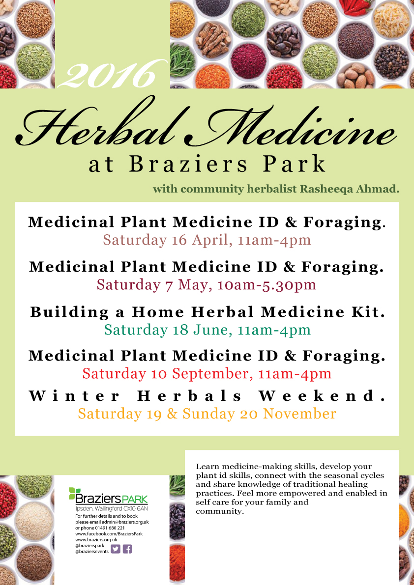 Creating a Herbal Medicine Kit for your Home
