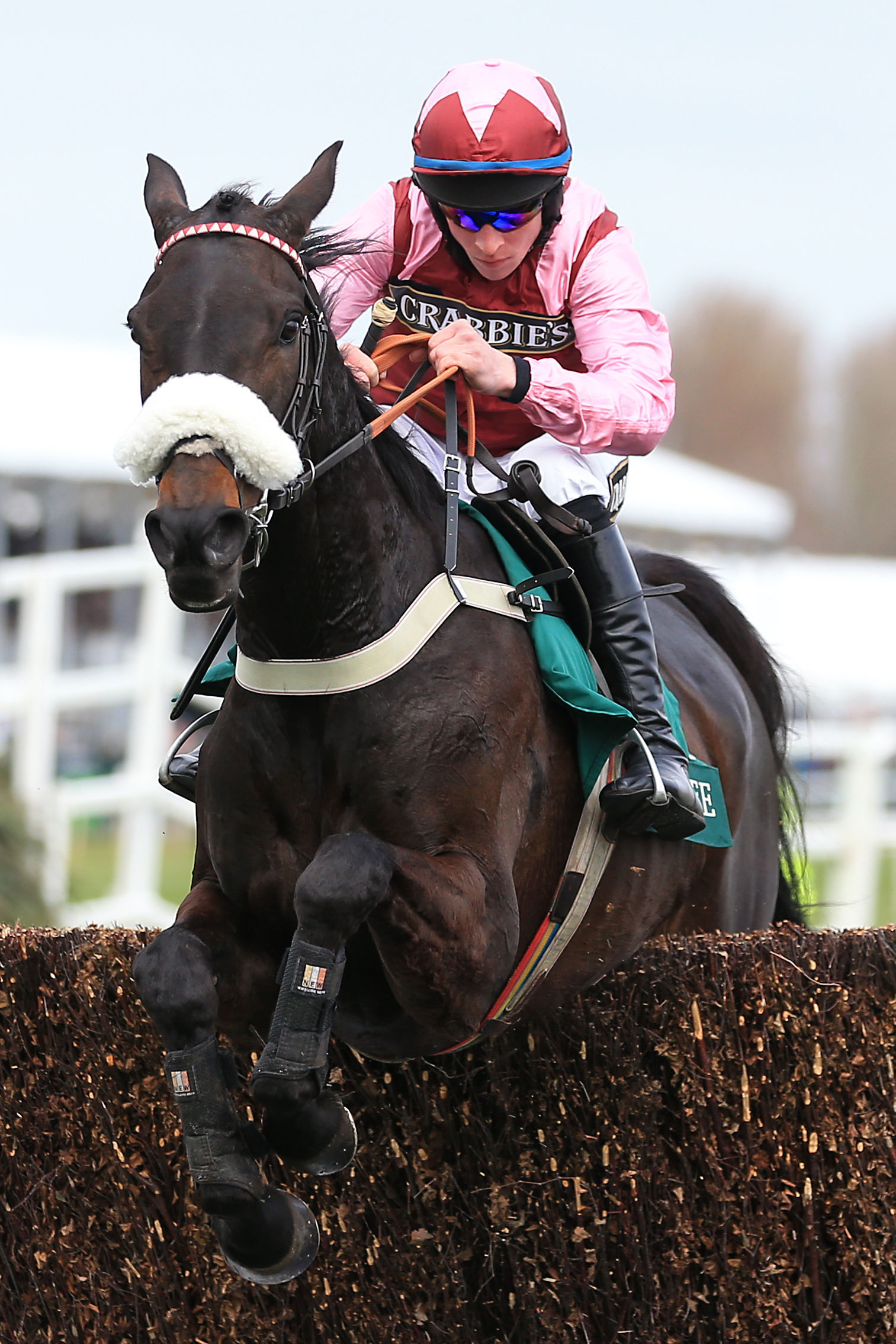 Arzal and Gavin Sheehan on their way to victory at Aintree to provide trainer Harry Whittington with a first Grade 1 win
