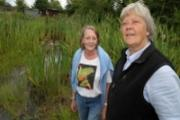 Call for action: Carol Jarvis, left, and Vibeke Mannion at the waterlogged allotments