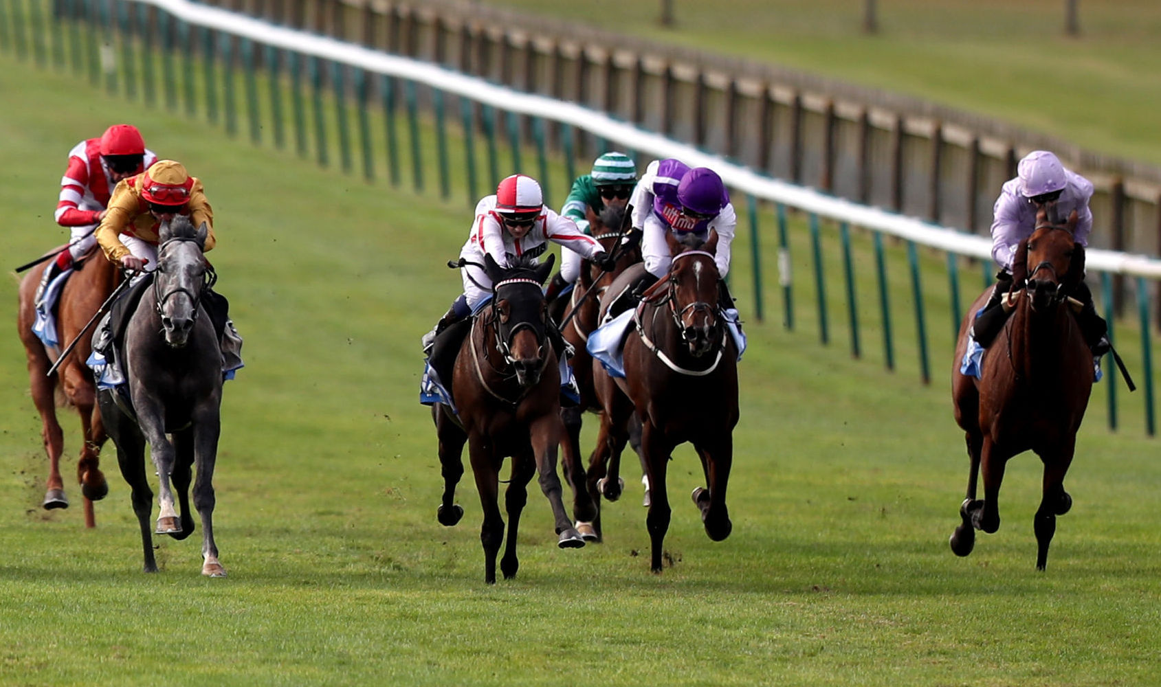 VALUABLE VICTORY: Eve Johnson Houghton's Scarlet Dragon (red & white cap), ridden by Hollie Doyle, heads for victory in the Godolphin Flying Start Old Rowley Cup at Newmarket