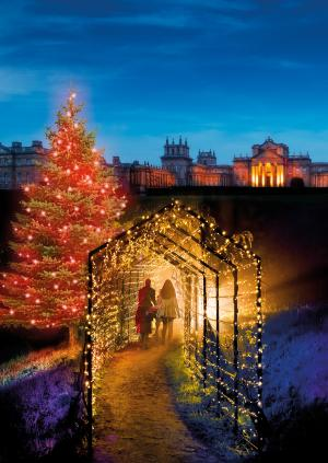 The Oxford Times: Blenheim Palace gets festive as it reveals its spectacular Christmas Light Trail - pictures here