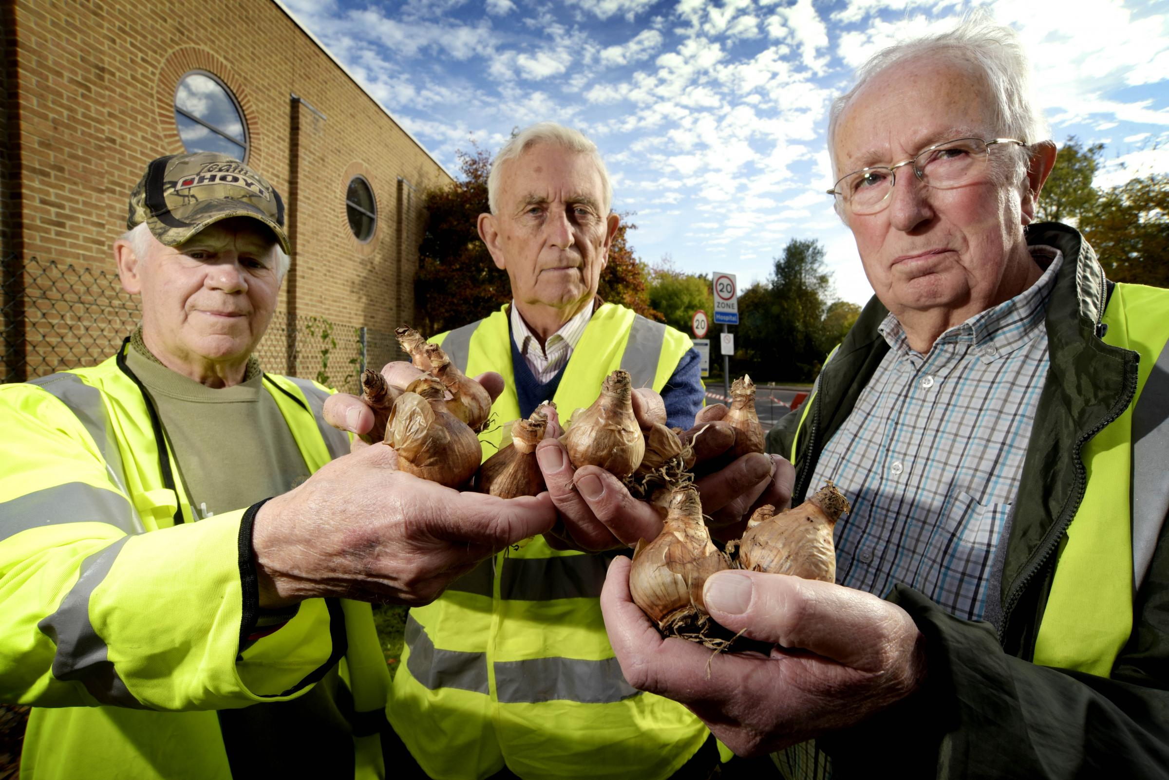 John Walker, Brian Crossin and Mike Laster with some of the hundreds of bulbs which were planted in October to pay tribute to troops who died in the Afghanistan conflict. Picture Dave Fleming