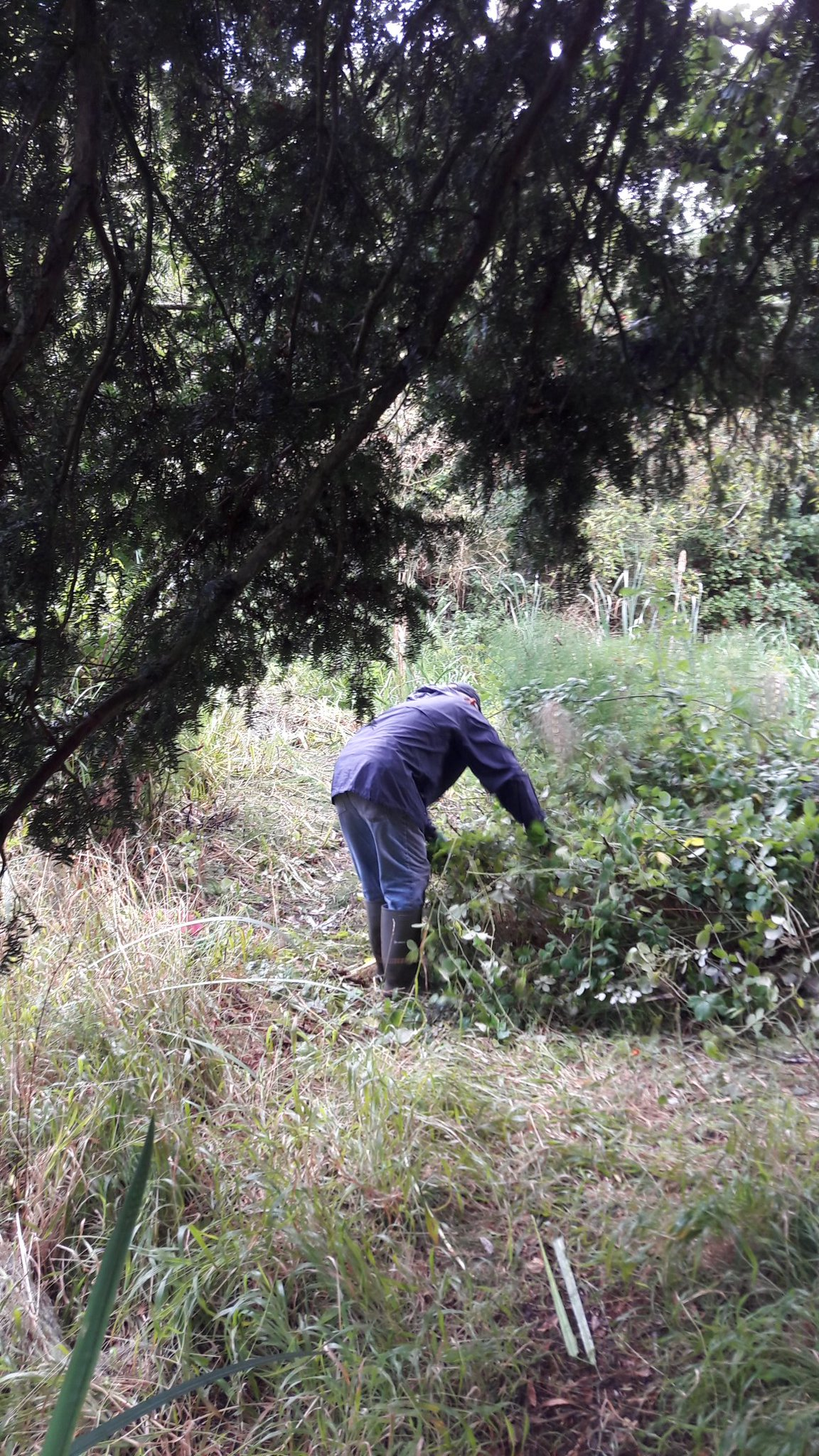 Stansfeld Woodland Restoration Project Day
