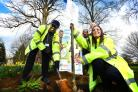 Staff from the JR Hospital planting lime trees in the grounds of the hospital to mark NHS Sustainability Day. Picture: Richard Cave