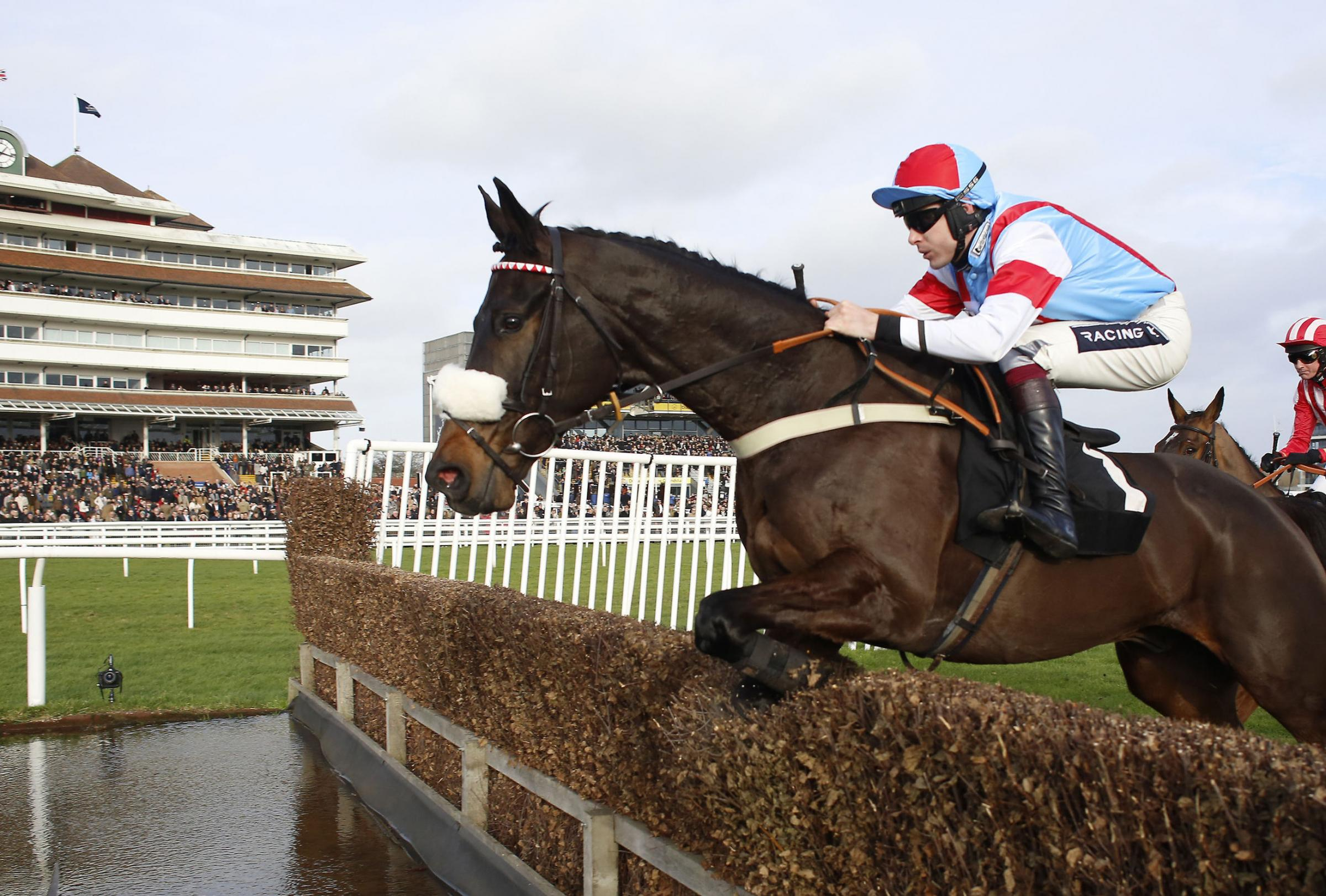 CLASS ACT: Saint Calvados and Aidan Coleman on the way to victory at Newbury earlier this seasonPicture: Julian Herbert/PA Wire