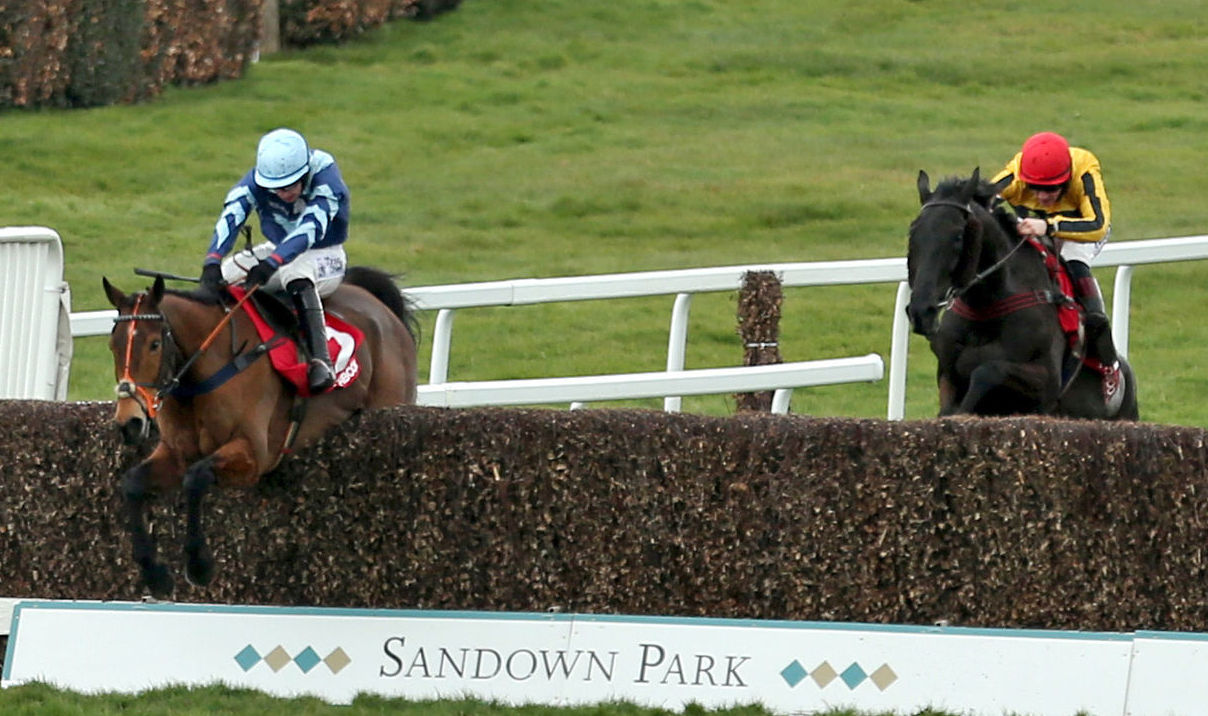 PLUCKY: Veteran Pete The Feat and Jonathan Burke clear the last fence ahead of Horatio Hornblower to go on and win the Matchbook Racing Is Commission Free Handicap Chase at Sandown on SaturdayPicture: Steven Paston/PA Wire