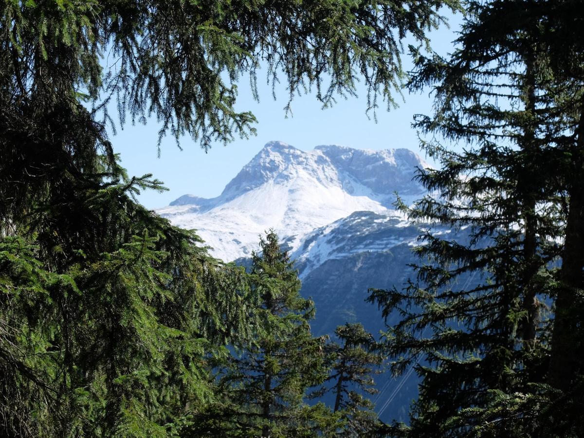 Resultado de imagen para Eagles Trail austria